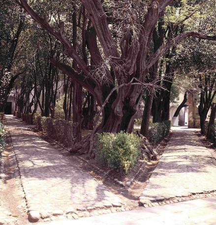 Atrio de los olivos, Seminario de San Martín e iglesia de San Pedro
